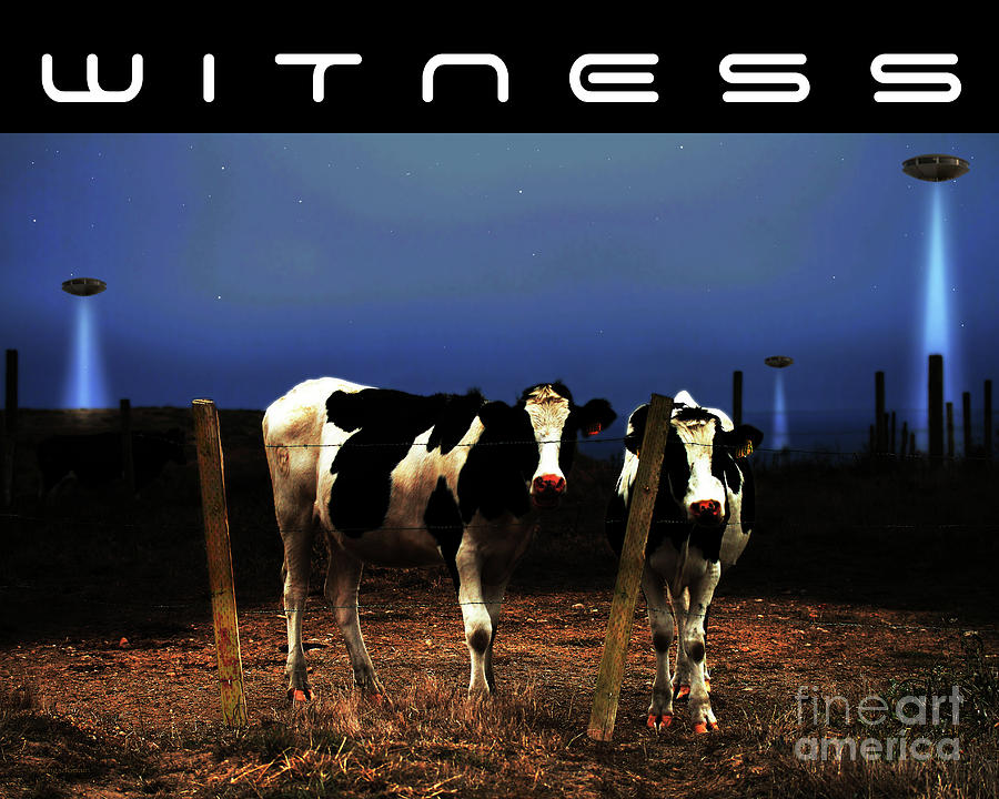 Witness . The Arrival . With Text Photograph  - Witness . The Arrival . With Text Fine Art Print