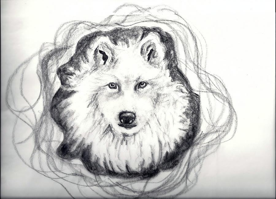 Wolf totem drawing - photo#9