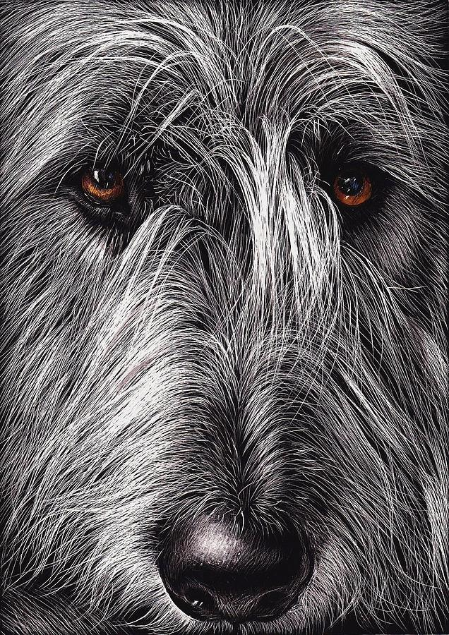 Wolfhound Mixed Media  - Wolfhound Fine Art Print