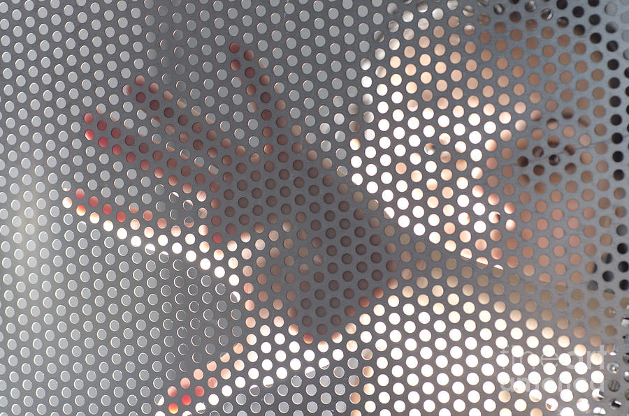 Woman behind a metal mesh photograph by mats silvan