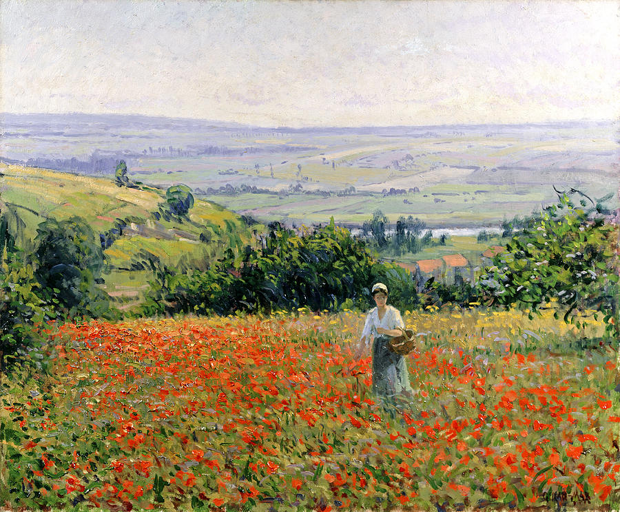 Woman In A Poppy Field Painting