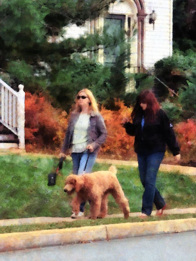 Women Walking A Dog Photograph  - Women Walking A Dog Fine Art Print