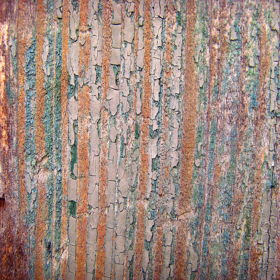 Wood No 5 Photograph