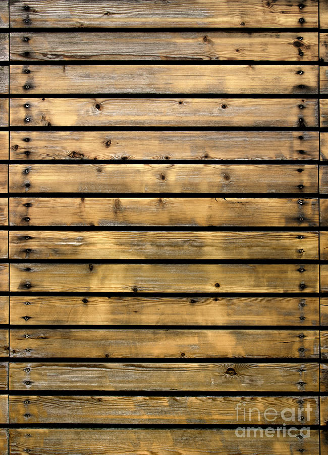 Wood planks photograph by carlos caetano