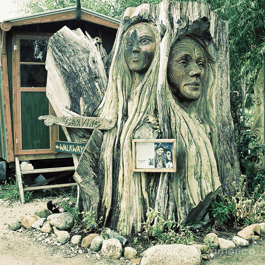 Woodcarved faces on tree trunk in new zealand by trude janssen