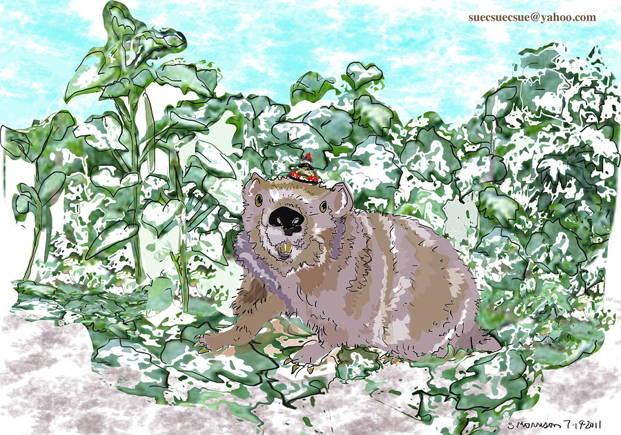 Woodchuck Chuck Drawing  - Woodchuck Chuck Fine Art Print
