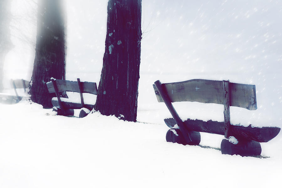 Wooden Benches In Snow Photograph