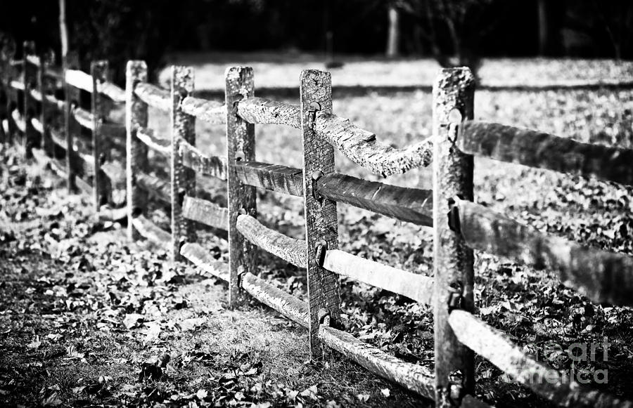 Wooden Fence Photograph