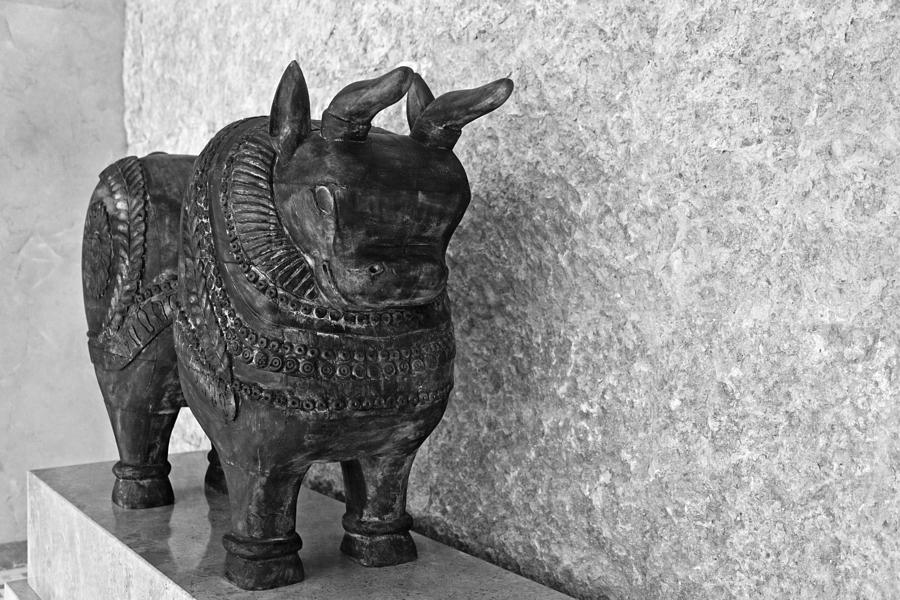Wooden Hand Carved Ornamental Bull Photograph