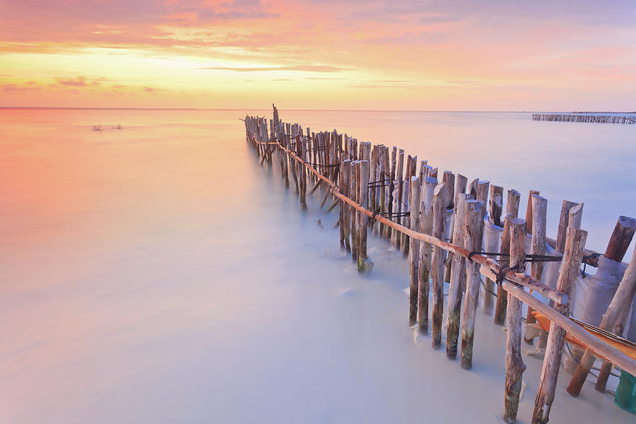 Wooden Posts Into  Sea Photograph