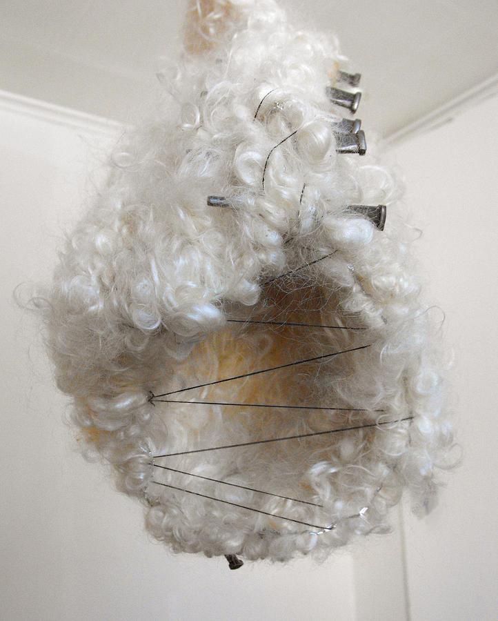 Wool Cocoon By Renata Memole