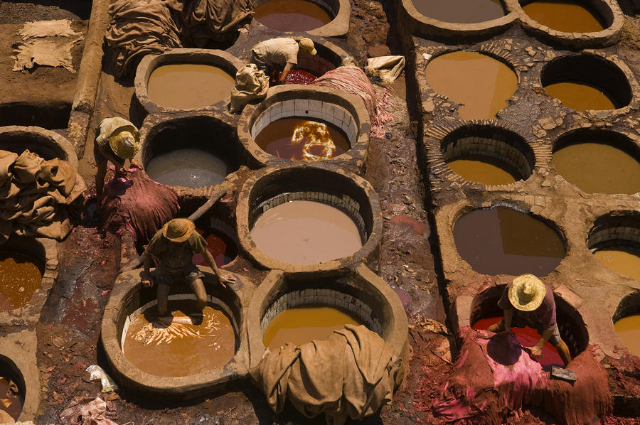 Workers In The Tanneries Of Fez Soak Photograph  - Workers In The Tanneries Of Fez Soak Fine Art Print