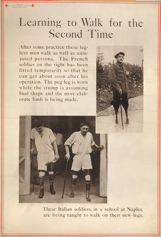 World War I, Red Cross Poster Showing Photograph