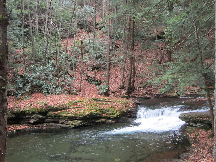 Wykoff Run Photograph