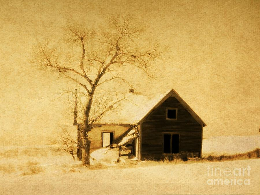 Wyoming Homestead Photograph  - Wyoming Homestead Fine Art Print