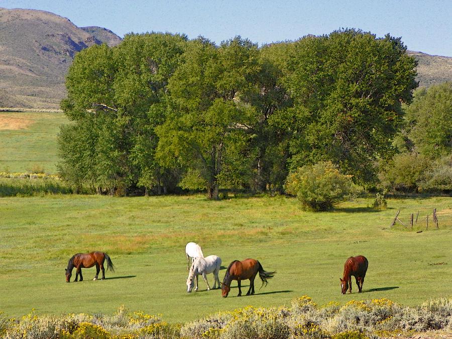 wyoming-landscape-with-horses-lenore-senior-and-dawn-senior-trask.jpg