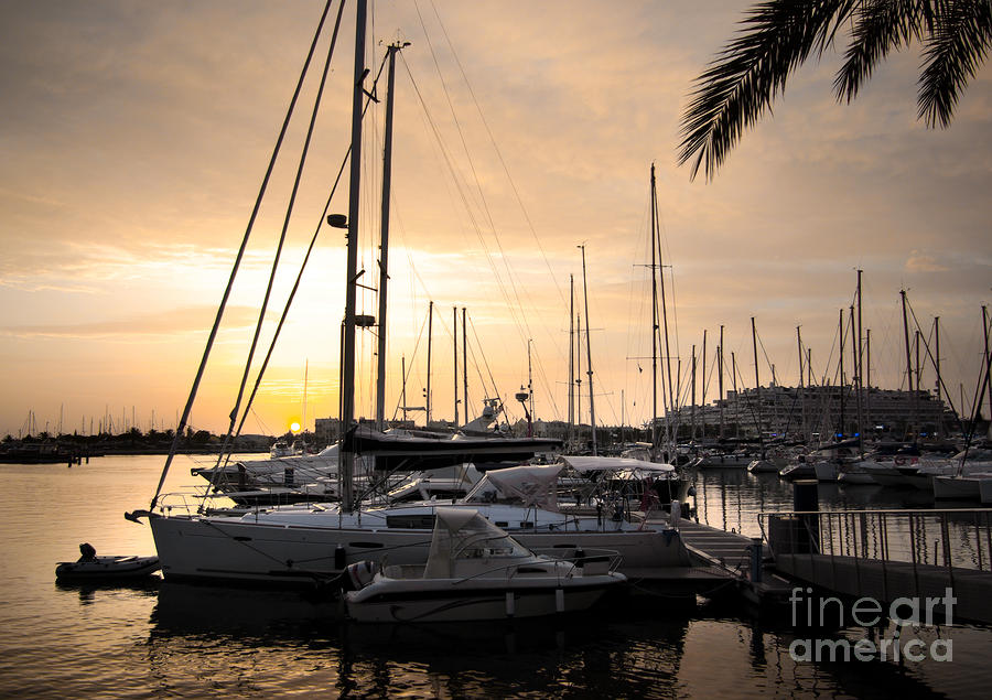Yachts At Sunset Photograph
