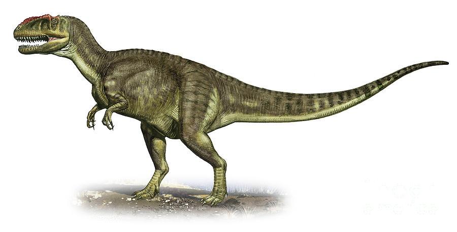 Horizontal Digital Art - Yangchuanosaurus Shangiouensis by Sergey Krasovskiy