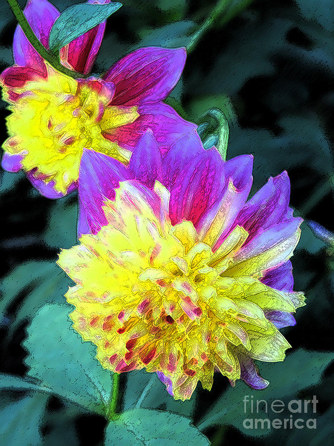 Yellow and purple dahlia digital art by eva kaufman for Purple and yellow painting