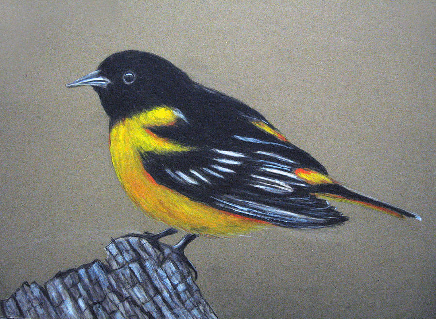 Yellow Bird Painting by Parivel Murugesan