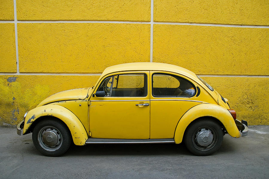 Yellow Bug Photograph  - Yellow Bug Fine Art Print