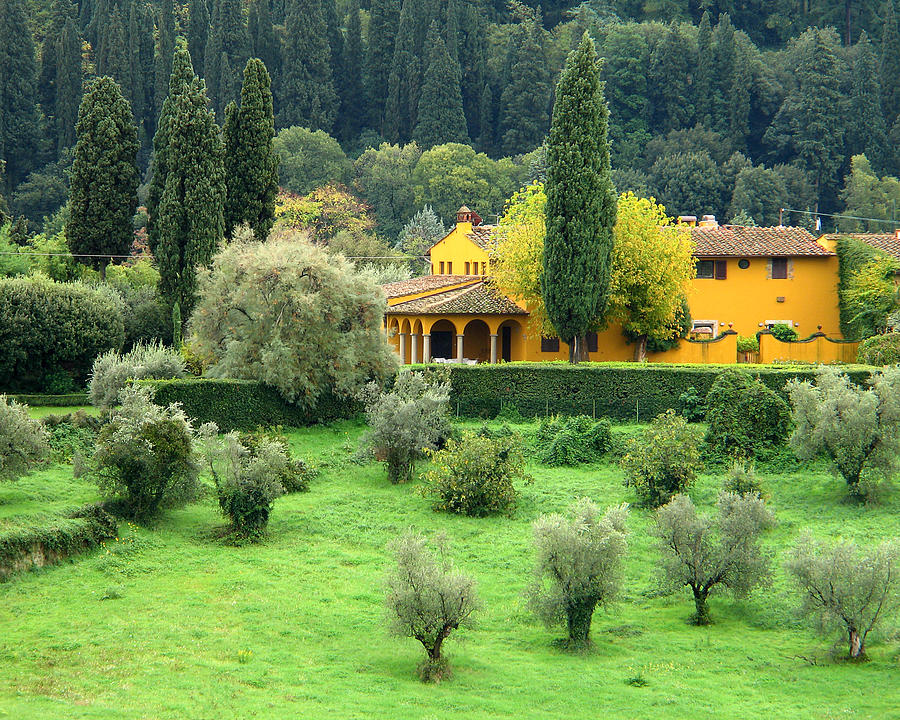 Yellow Farmhouse In Tuscany graph by Greg Matchick