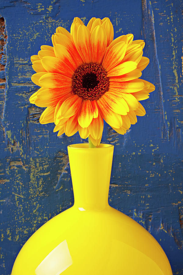 Yellow Mum In Yellow Vase Photograph