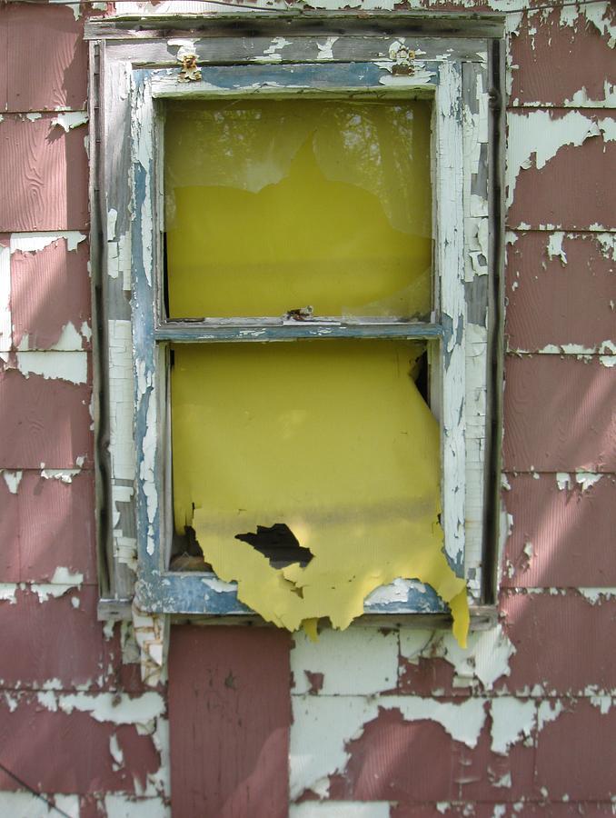 Yellow Shade Photograph