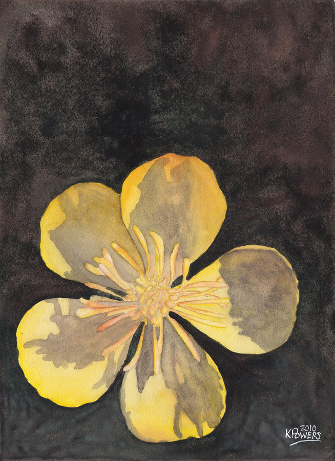 Yellow Wild Flower Painting  - Yellow Wild Flower Fine Art Print