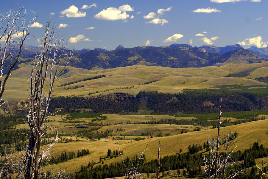 Yellowstone Landscape 2 Photograph  - Yellowstone Landscape 2 Fine Art Print