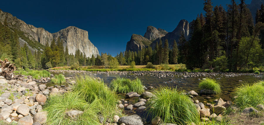 Yosemite - El Capitan Photograph