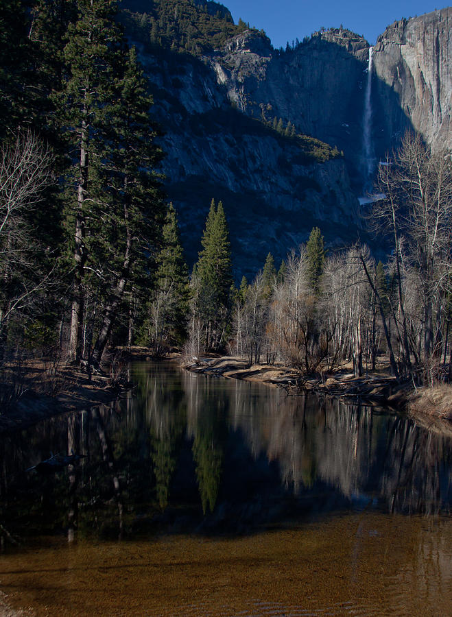 Yosemite River View Photograph  - Yosemite River View Fine Art Print