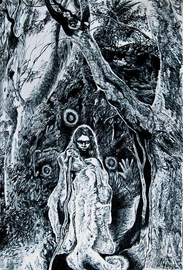 Young Aboriginal Woman And River Red Gum Drawing  - Young Aboriginal Woman And River Red Gum Fine Art Print
