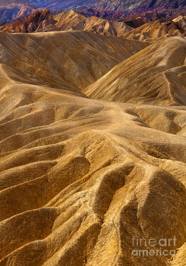 Zabriskie Morning Photograph  - Zabriskie Morning Fine Art Print