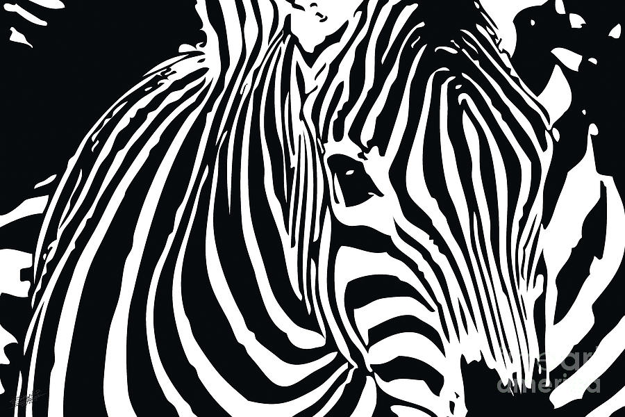 zebra-01A Drawing