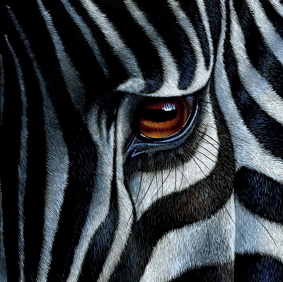 Zebra by jurek zamoyski for Art print for sale