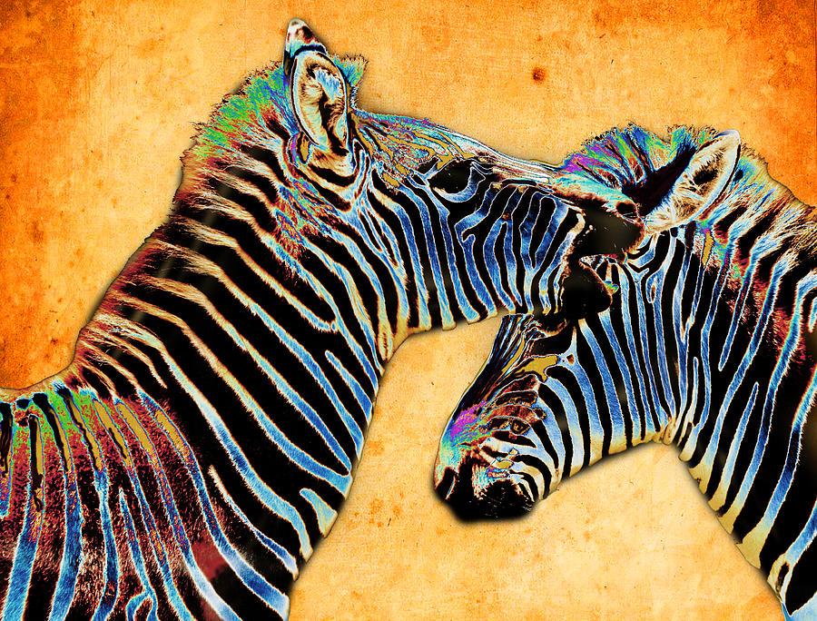 Zebra Photograph - Zebra Tales by Barbara  White