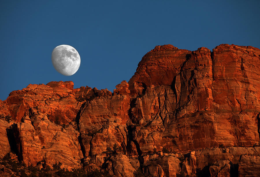 Moon Photograph - Zion Moonrise by David Yunker