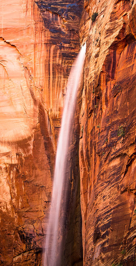 Landscape Photograph - Zion Waterfall by Adam Pender