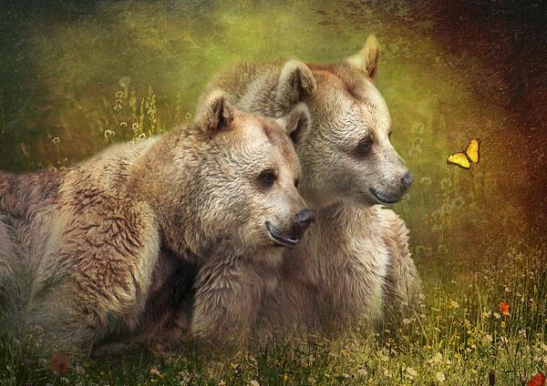 Bear Hugs Print by Trudi Simmonds