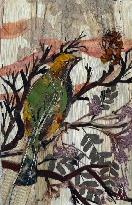 Basant Soni -  Green-yellow Bird