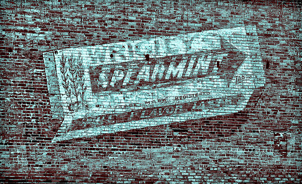 Gum On Brick Blue Print by Tony Grider