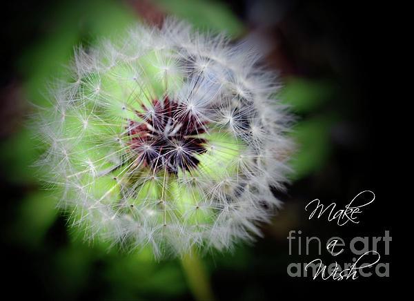 Eva Thomas -  Make a Wish