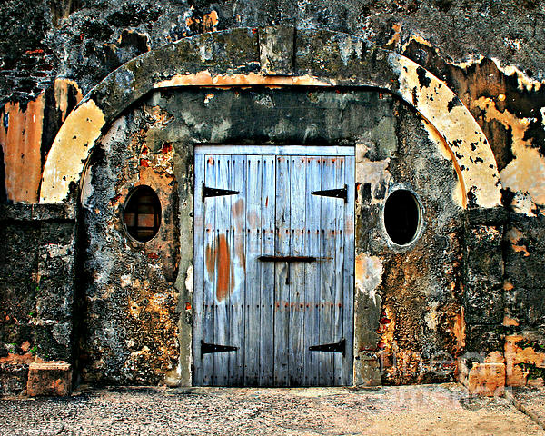 Old Wooden Doors Print by Perry Webster