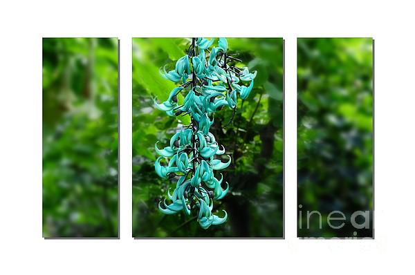 Turquoise Jade Vine  Print by Elaine Manley