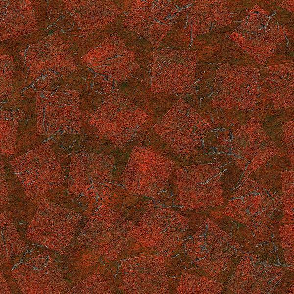 Chowdary V Arikatla - 0182 Backyard In Bad Shape