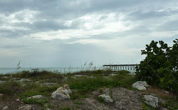 Carol McKenzie - 02 Pier Venice Island Fl
