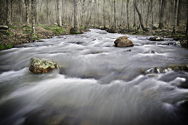 0804-0122 Rolling Creek Of The Ozark Mountains Print by Randy Forrester
