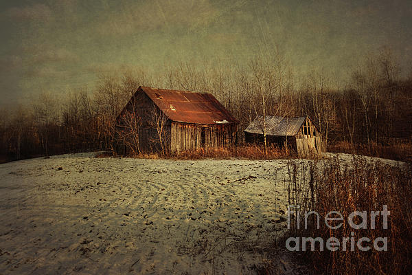 Abandoned Barn After The First Snow Print by Sandra Cunningham