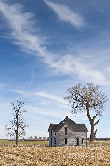 Abandoned House In Field Print by Dave & Les Jacobs